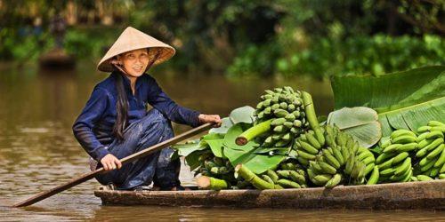 Преимущества покупок в интернет магазине товаров из Вьетнама